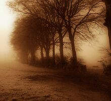 I dream of foggy mornings by Richard Horsfield