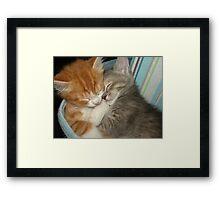 Sleep Tight Framed Print