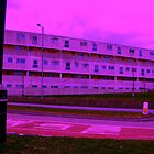 Bauhaus Purple by wayney