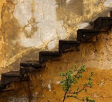 Stairs, Tree And Yellow Wall: Decay in Cappadocia by Josh Wentz