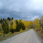 Moody Road - Durango, Colorado by jiggy