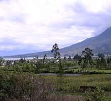 Panorama of Lago De San Pablo, Ecuador by Al Bourassa