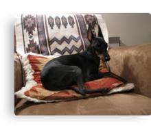 Little Black Dog Canvas Print