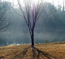 Pale Sunlight by kaitonthekeys
