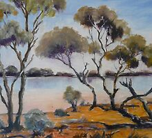 Lake near Northam, Western Australia. by Kay Cunningham