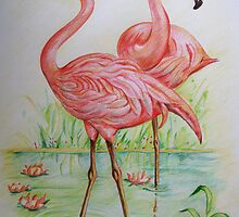 Flamingos cooling down by Charlotte Sarah Rhodes