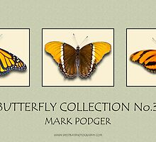 Butterfly Horizontal Collection 3 - Print by Mark Podger