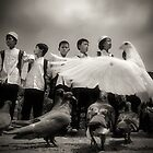 just fly like a dove boys by RONI PHOTOGRAPHY