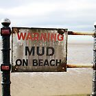 Mud on Beach by Tabita Harvey