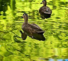 It's a green world by Renee Hubbard Fine Art Photography