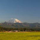Mount Rainier with Rural Farm by Stacey Lynn Payne