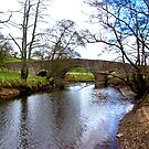 The Bridge at Semer Water - Yorks Dales. by Trevor Kersley