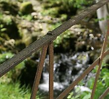 old iron gate by stream in Hawkshead by BronReid