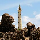 California Lighthouse - Aruba by djphoto