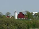 Country Life by Barberelli