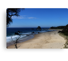 GlassHouse Rocks Beach Canvas Print