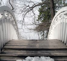 The white openwork bridge in park Monrepo by Tasha1111