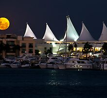 Marina Mirage Moon by D Byrne