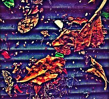Leaves in the Grate by oddoutlet