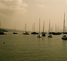 Boats on Zurich Lake  by nclose21