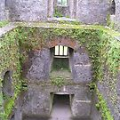Inside Blarney Castle by Pamela McCreight