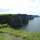 Cliffs of Moher, Ireland by Pamela McCreight
