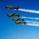 Castrol Flying Lions Harvard Aerobatic Team by RatManDude
