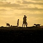 Noordhoek Family Walk by Neil  Bradfield
