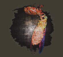 Cicada by col hellmuth