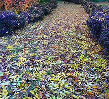 The Walkway to Wonderland by Georgie Hart