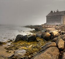House in the Fog by Sue  Cullumber