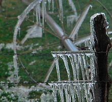 Irrigation on Ice - Junction, Utah by DMPhotographyKC