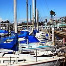 Redondo Beach Harbor 1118 by eruthart