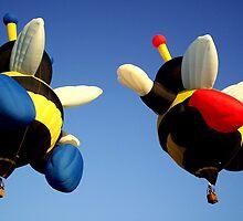 Bumble Bee by Rinaldo Di Battista