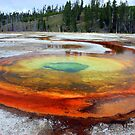 Chromatic Spring, Yellowstone National Park by heidiannemorris