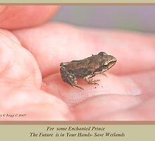 Some Enchanted Prince His Future is in Your Hand—Save Wetlands A by pogomcl