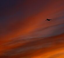 Flying into the Flames by fototaker
