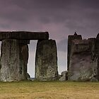 Stonehenge by Nigel Marshall