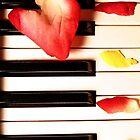 Sensual Harmony by Procuras