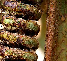Rusty Springfield - Guessed by Micahel Scott - part of a mangle by hardhhhat