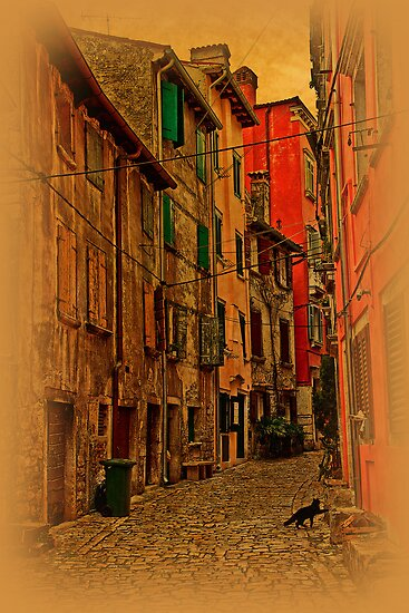 The streets of Rovinj by vadim19