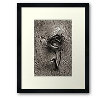 At One With Nature #2 Framed Print