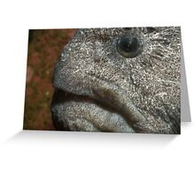 Wrinkle face Greeting Card