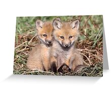 """Warning"" Cuteness Advisory Is In Effect Greeting Card"