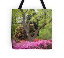 "The Boss said, ""Let There BE C O L O U R"": and there was colour... WOW! Tote Bag"
