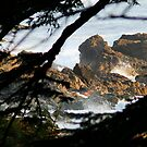 Cape Scott .. Vancouver Island by AnnDixon