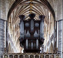 Exeter Cathedral Organ by Jazzdenski