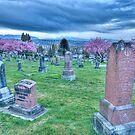 Hillside Memorial by Tracy Riddell
