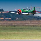 Flying Lion – ZU-BEU - Harvard Aerobatic Team by RatManDude
