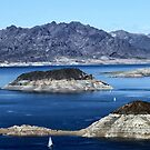 Lake Mead Sailing by Tammy Espino